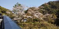 観音滝画像の2.JPG